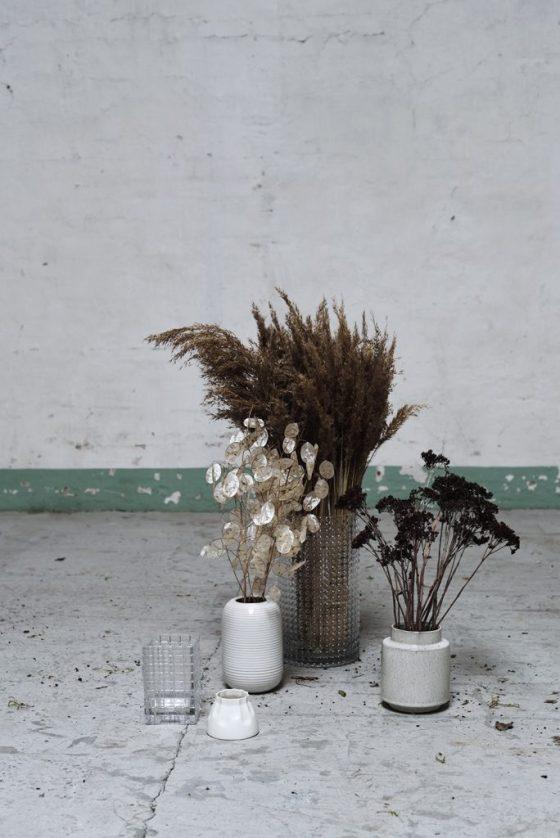 Photoshoot med tørrede blomster