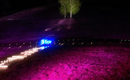 芝桜公園ライトアップ1
