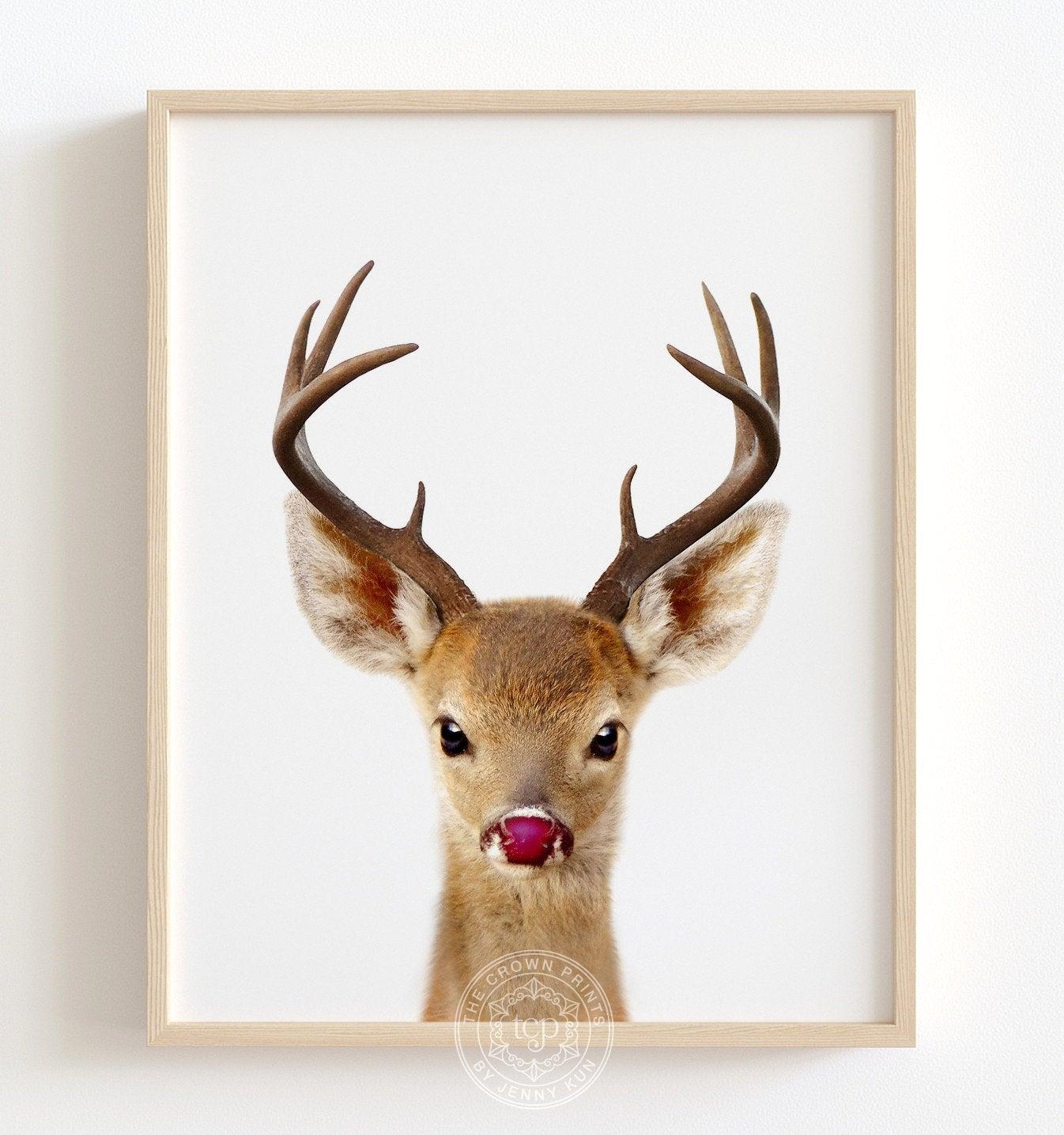 Reindeer Print Rudolph The Red Nosed Reindeer Christmas