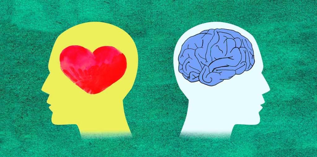 Curso gratis sobre el cerebro y las emociones en el lenguaje