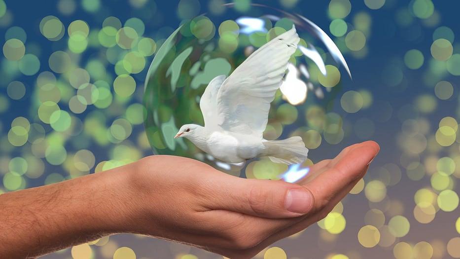 Curso Marco jurídico para la paz gratis