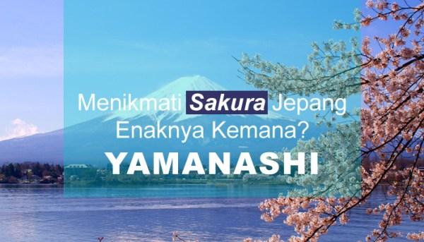 Menikmati Sakura Jepang Enaknya Kemana? Yamanashi!