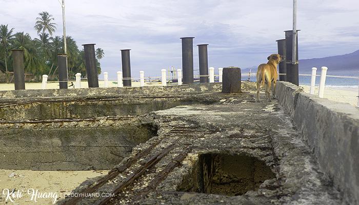 cute dog - Jelajah Pesona Pulau Pisang : Bertemu Teman Baru (Bagian 2)