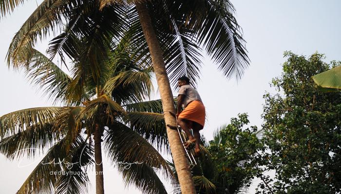 kumarakom 03 - 12 Tempat Wisata di Kerala Ini Kaya Alam dan Budaya (Part I)