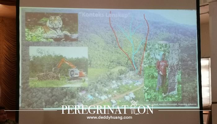 lestari hutan 13 - Melestarikan Hutan Demi Generasi Nanti