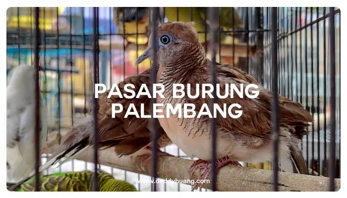 pasar burung palembang