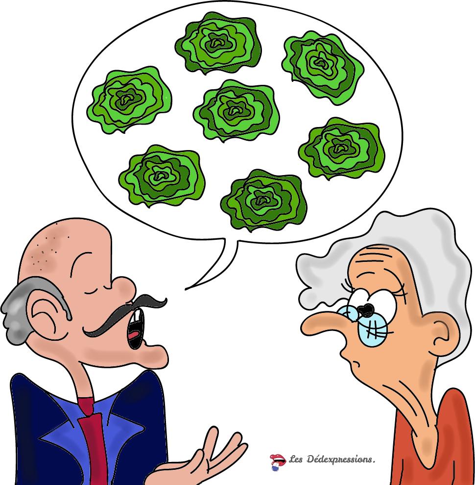 raconter-des-salades-modifie