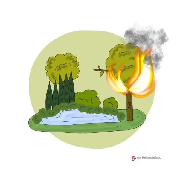 définition expression Il n'y a pas le feu au lac Les Dédexpressions