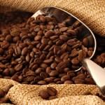 cafés de origen