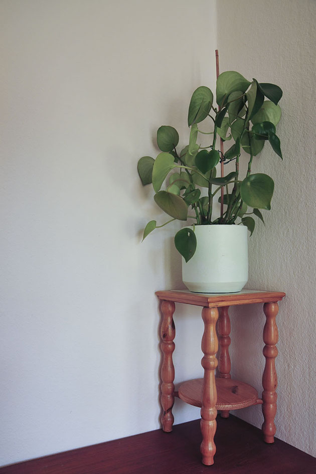 lichthouten plantenkruk mintgroene pot met plant