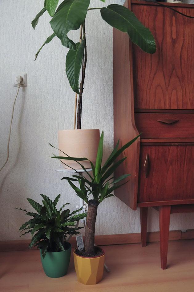 marmeren plantenkruk