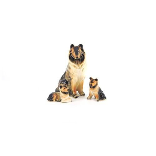 set hond met puppies