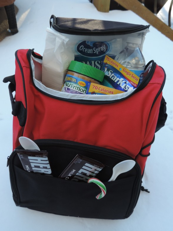 Sacko Insulated Lunch Bag Review