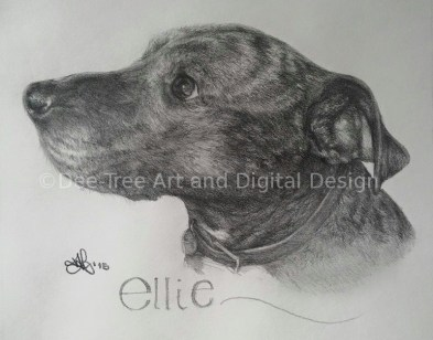 Pet portrait - Ellie