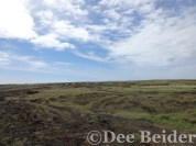 the many roads to Green Sands