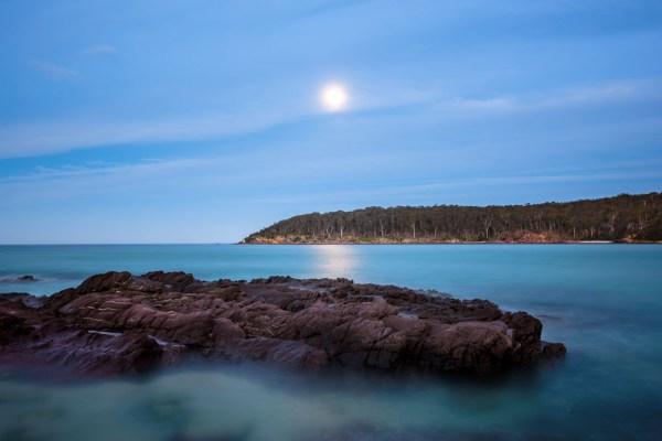 Moonlit Dream