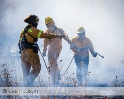 Attacking the head fire during a controlled burn.