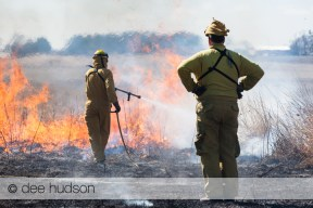 A crew leader supervises the controlled prairie burn.