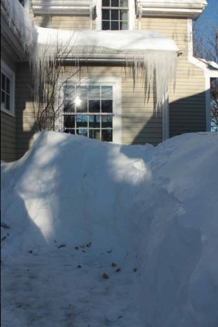 snow-deemallon-winter2015