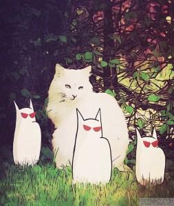 Catception?