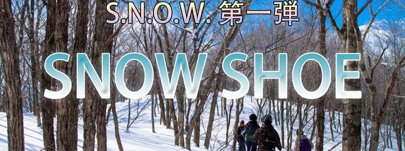 雪原アニマルウォッチングツアー(11月~受付開始)