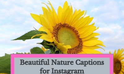Beautiful-Nature-Captions-for-Instagram-
