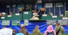 Surrey County Show 2014 - Alan Meeks (33)