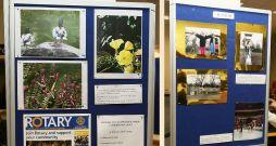 Rotary Photo Comp 2015 5