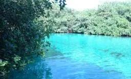 Casa Cenote - Cenote Manati - Tank Ha
