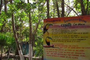 Bienvenidos Cenote Carwash