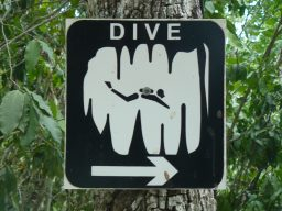 Cavern Diving for Experienced Open Water Divers