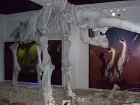 Museo de la Prehistoria Parque Dos Ojos