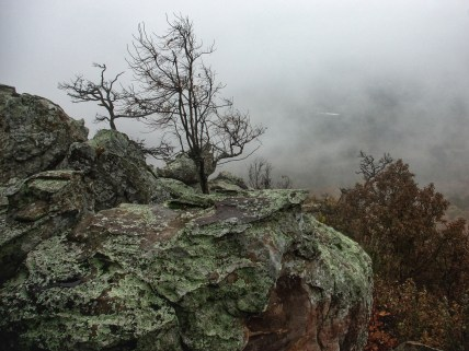 Petit Jean Mountain - At the Edge
