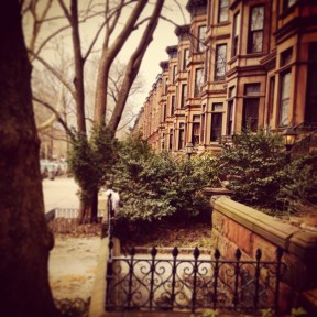 Classic Brooklyn Brownstones