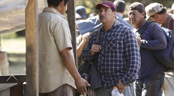 """'American Crime' Delivers """"Cascade Effect"""" With Immersive Storylines"""