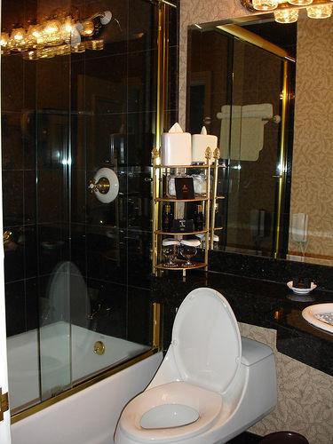 Bathroom, Le Pavillon, New Orleans LA