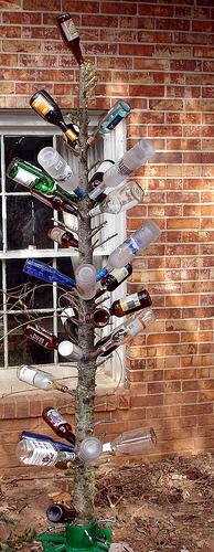Bottle Tree 7