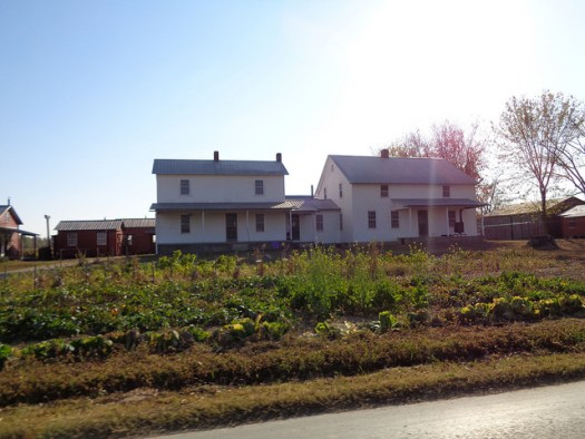 Amish Community of Ethridge TN