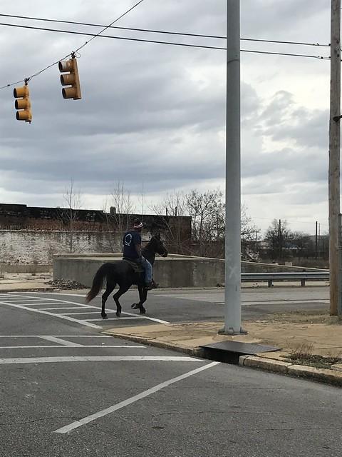 Bessemer Horse