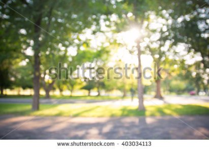 stock-photo-defocused-bokeh-background-of-garden-with-blossoming-trees-in-sunny-day-backdrop-403034113