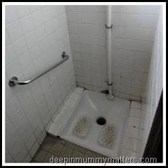 French toilet