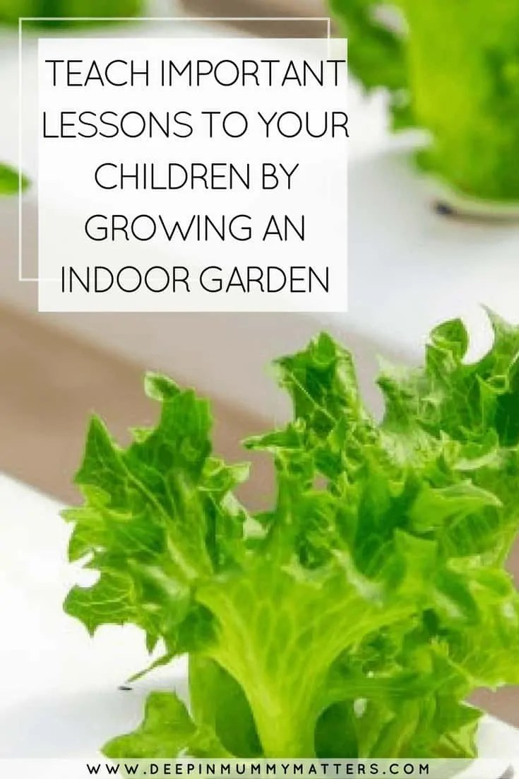 TEACH IMPORTANT LESSONS TO YOUR CHILDREN BY GROWING AN INDOOR GARDEN