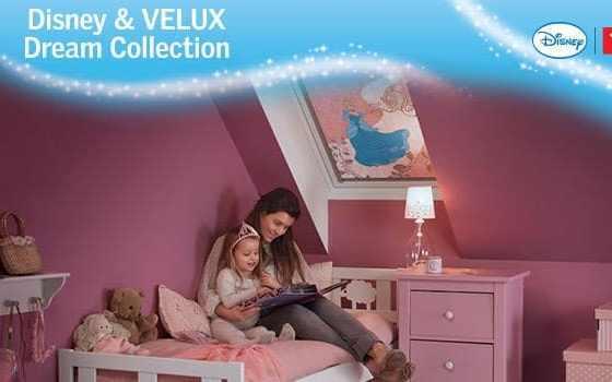 Disney Velux Blind
