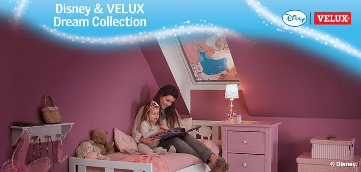 Disney Velux Blind