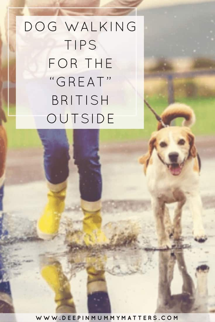 """DOG WALKING TIPS FOR THE """"GREAT"""" BRITISH OUTSIDE"""