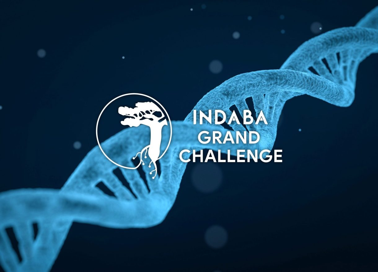 Indaba 2020 - Deep Learning Indaba 2020