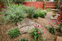 Perennial flowers, shrubs, and Aspen trees add a lush splash of seasonal color to this backyard. Natural elements, such as Malpais boulders were added to create a balance between the soft and hard landscape elements. Trellis and climbing vines will create a sense of privacy in this backyard oasis.