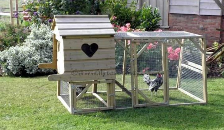 What Is A Chicken Tractor and Thoughts On Having Chickens, portable chicken coop, make your own, backyard, urban chicken house, laying eggs, keeping chickens
