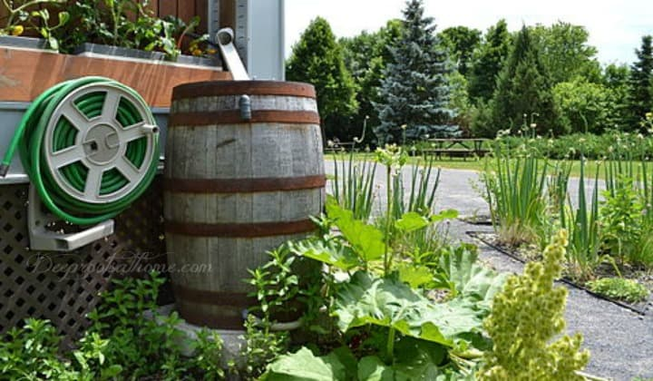 Rain Barrel Ramblings: Clever Ways To Water the Garden & Save, raised garden bed with irrigation system, rain collection barrels, water drip system