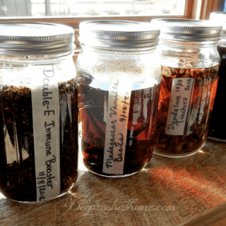 Make Your Own Herbal Tinctures At Home NO text